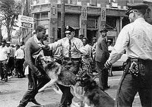 High School student Walter Gadsden being attacked by dogs during the protests